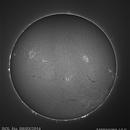 El sol del dia 08/03/2014,                                Julio