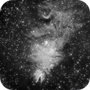 NGC 2264 Cone Nebula & Christmas Tree in Monoceros - H-Alpha,                                Ray Caro
