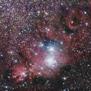Cone and Christmas Tree Nebula's,                                Chris Price