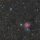 SH2-82 The Little Cocoon Nebula,                                StarDiver