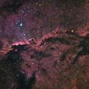 Fighting Dragons of Ara (NGC6188),                                Daniel