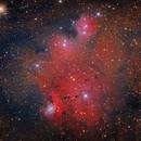 NGC 6559, IC 1274, IC 1275,                                Marcelo Bastos Moreira da Silva