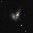 Siamese Galaxies,                                sydney