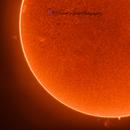 Sun with Prominence,                                Heidi Ihnen