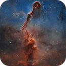 IC1396 - The Elephant's Trunk,                                Emil Andronic