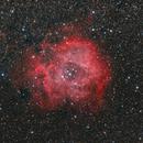 Rosette Nebula,                                cmk