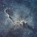 The Elephant Trunk Nebula, IC1396,                                Hagermi1