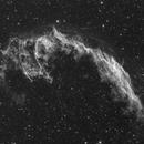 The Eastern Veil Nebula in Hydrogen Alpha,                                Wesley Creech