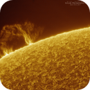 Solar Prominence I in Hydrogen Alpha, May 8th 2017,                                Martin (Marty) Wise