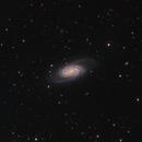 NGC 2903 - a barred spiral galaxy in Leo,                                Steve Milne
