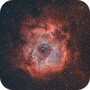 Rosette Nebula,                                Andrea Maggi