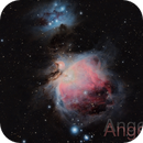 M42 and M43 Orion Great Nebula ,                                Angelillo