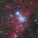 The Christmas Tree Cluster and the Cone Nebula,                                Atsushi Ono