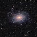 NGC6744 in Pavo  - SADR Team Chile,                                Arnaud Peel