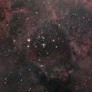 Rosette Nebula,                                stefanobarra