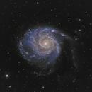 M101 - The Pinwheel Galaxy  - Two camera combination,                                JohnAdastra