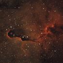 Elephant Trunk Nebula,                                Robert Browning