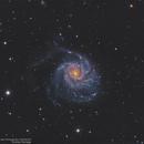 M101 LRGB+HA,                                alpheratzlaboratory