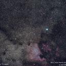 NGC 7000 North America Nebula #5,                                Molly Wakeling