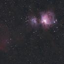 M42 Horsehead Complex - SpaceCat51 - 2600MC,                                Itto Ogami