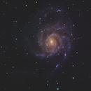 Galassia Girandola - M 101,                                Astrorane