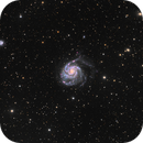 M101 Pinwheel Galaxy from DSW,                                Davide Coverta