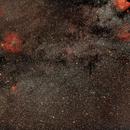 Between Cygnus and Cepheus wide field / Canon 100Da + Canon 50mm f/1.4  /  SW sam / 1600iso,                                patrick cartou