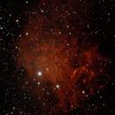 C31 - Flaming Star Nebula in dual Narrowband,                                Craine