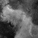 Cygnus Wall - Ha,                                Eric Walden