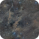 Molecular Clouds in Octans,                                oldwexi