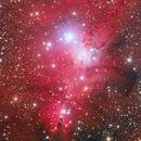 NGC2264,                                Davide Manca