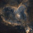 Heart Nebula,                                hectorbdn