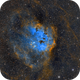 Tadpoles Nebula IC 410,                                Stan Smith