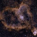 IC1805: The Heart Nebula Bicolour (Ha/OIII) (2019),                                Daniel Tackley