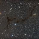 Barnard 150 near Cepheus,                                Stephen Armen