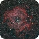 The Rosette Nebula,                                Cédric Champeau