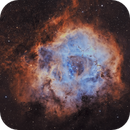 NGC 2244 - The Rosette/Skull Nebula,                                Casey Good