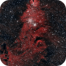 Cone Nebula and Christmas Tree Cluster,                                  Dan Gallo