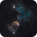 SH2-248 and SH2-249 The Jellyfish Nebula,                                Bob Stevenson