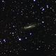 NGC4236,                                Paolo Manicardi