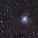 Iris Nebula,                                Federico Francesco Firpo