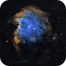 Monkey head nebula - NGC2175,                                  PiPais