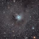 NGC 7023,                                Felix