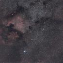 NGC 7000 Region,                                David McClain