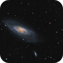 M106 - A Nearby Seyfert Galaxy,                    Jason Guenzel
