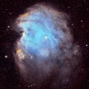 MonkeyHead Nebula SHO,                                Kristof Dierick