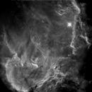 IC2944, Running Chicken Nebula, in Starless SII,                                John Ebersole