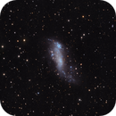 IC 2574,                                Dave59
