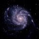 M101,                                Rich