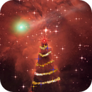 The Christmas Tree Nebula and Christmas Comet,                    Eric Coles (coles44)